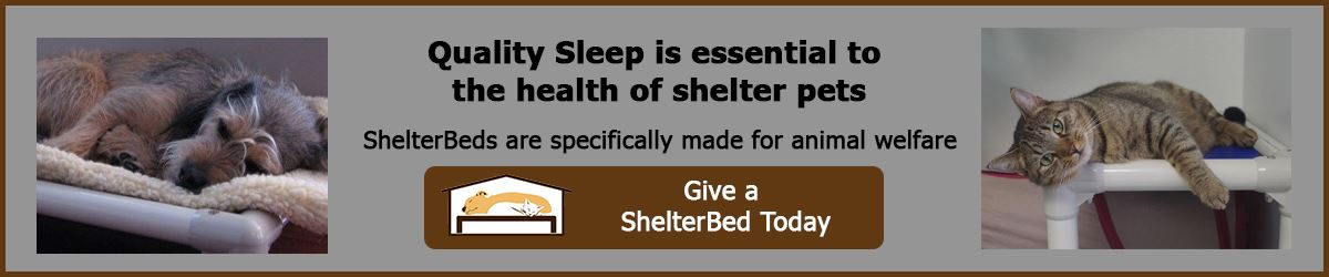 Kuranda Beds - Quality Sleep is essential to the health of shelter pets